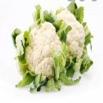 Ful Gobi ( Cauliflower )